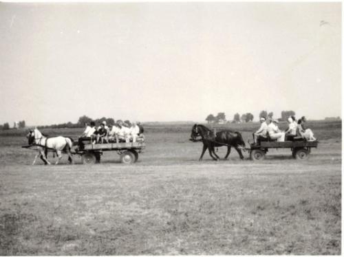 lovaskocsival