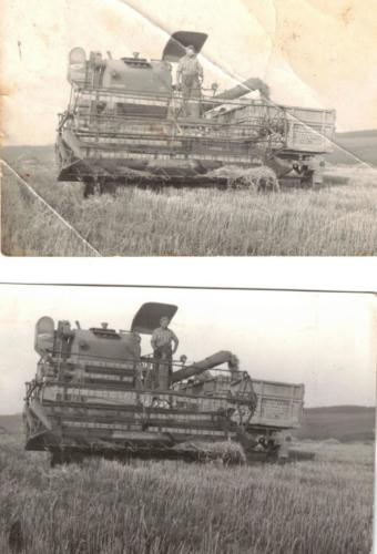 tsz aratás000