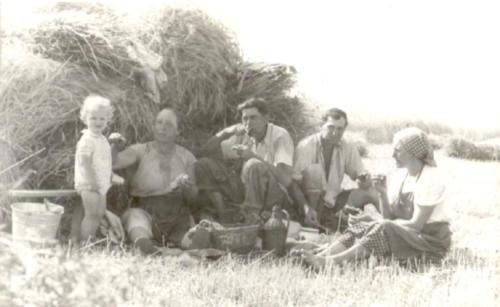 1960 Aratás