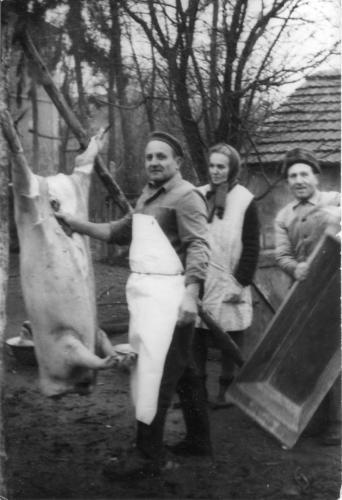 1969 disznóvágás Pajor Károly a falu mészárosa
