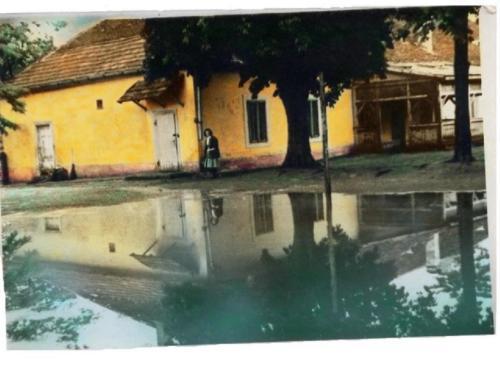 Medgyespusztai kastély 1969